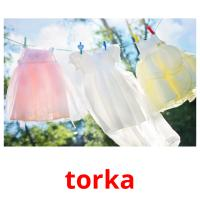 torka picture flashcards