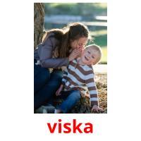 viska picture flashcards