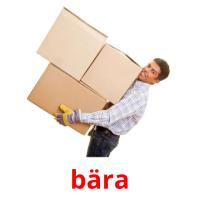 bära picture flashcards