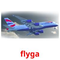 flyga picture flashcards