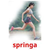springa picture flashcards