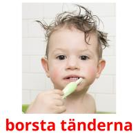 borsta tänderna picture flashcards
