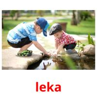 leka picture flashcards