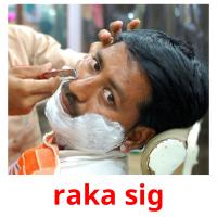 raka sig card for translate