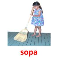 sopa picture flashcards
