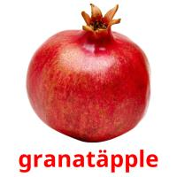 granatäpple picture flashcards