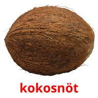 kokosnöt picture flashcards