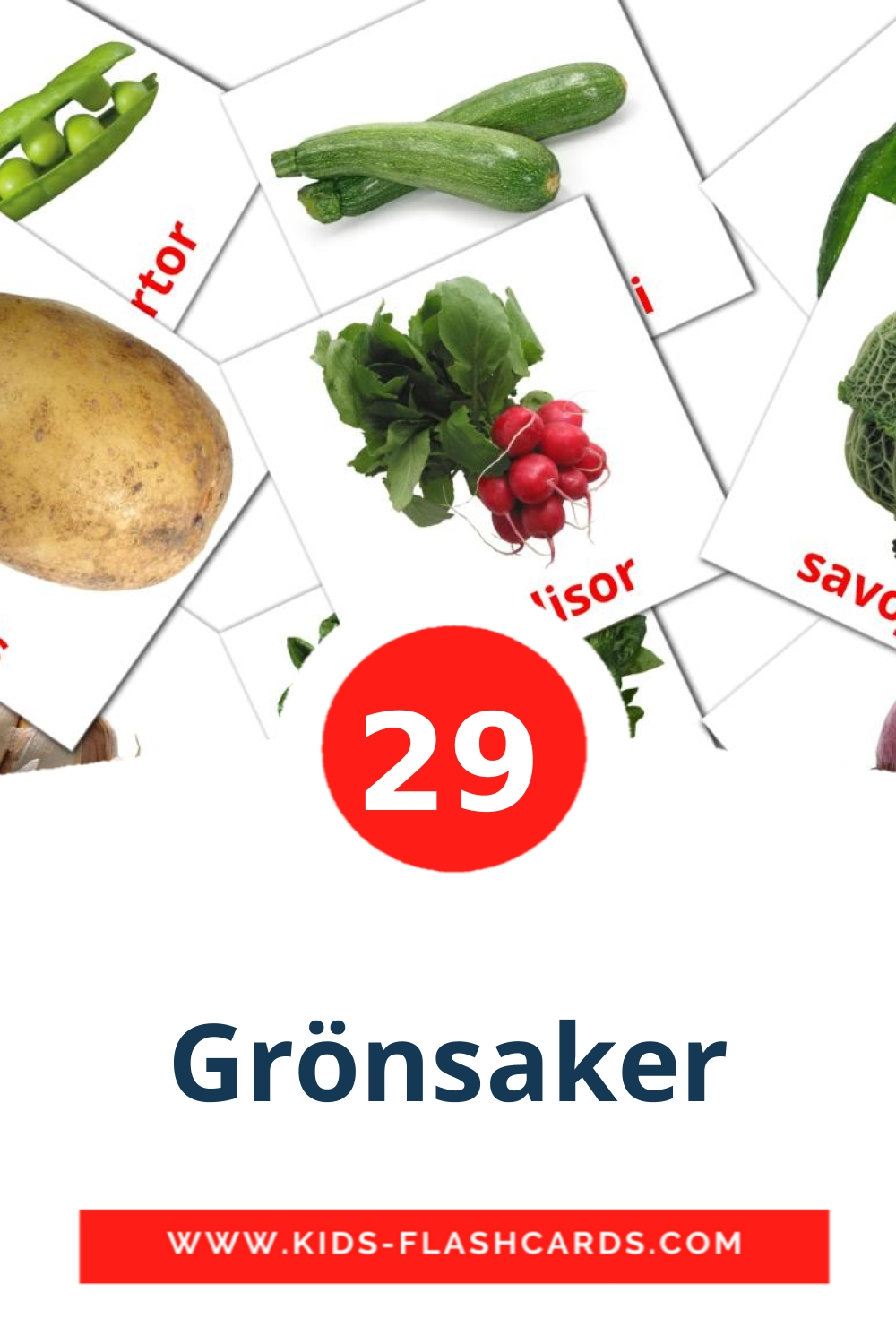 29 Grönsaker Picture Cards for Kindergarden in swedish