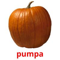 pumpa picture flashcards