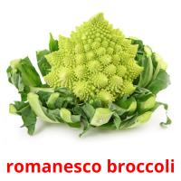 romanesco broccoli picture flashcards