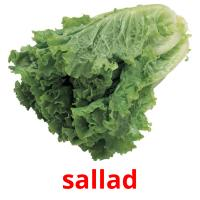 sallad picture flashcards