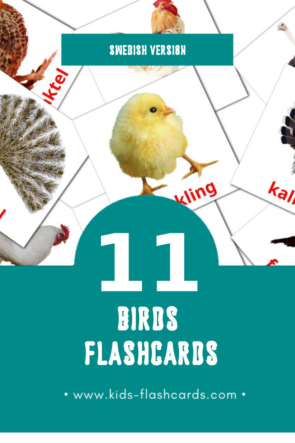 Visual Fåglar Flashcards for Toddlers (11 cards in Swedish)