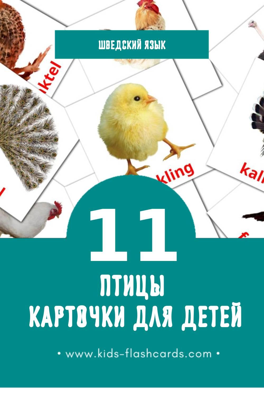 """""""fåglar"""" - Визуальный Шведском Словарь для Малышей (29 картинок)"""