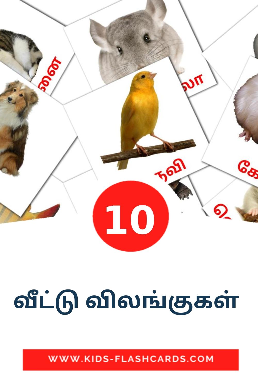 10 வீட்டு விலங்குகள்  Picture Cards for Kindergarden in tamil