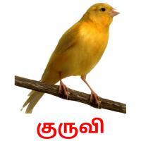 குருவி picture flashcards