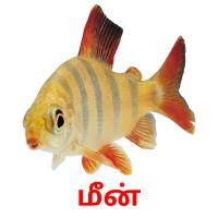 மீன் picture flashcards