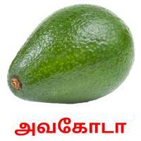 அவகோடா picture flashcards