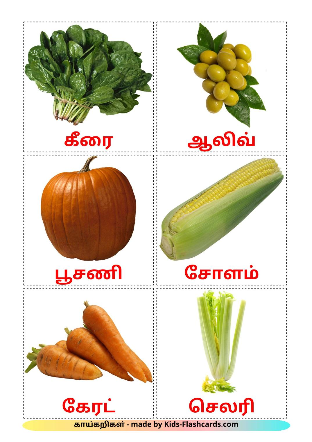 Vegetables - 29 Free Printable tamil Flashcards