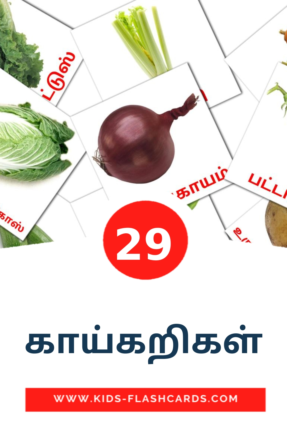 29 காய்கறிகள் Picture Cards for Kindergarden in tamil