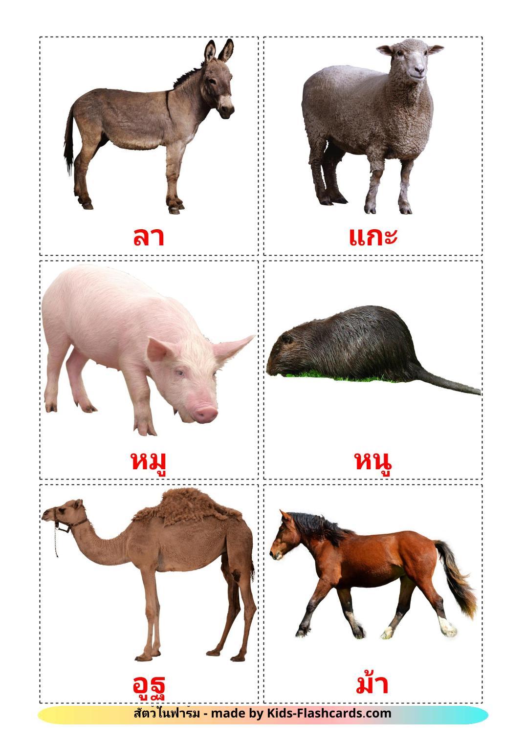Farm animals - 14 Free Printable thai Flashcards