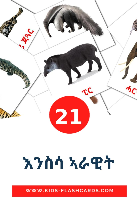21 እንስሳ ኣራዊት Picture Cards for Kindergarden in tigrigna