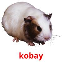 kobay picture flashcards