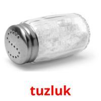 tuzluk picture flashcards