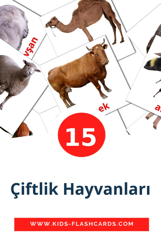 15 Çiftlik Hayvanları Picture Cards for Kindergarden in turkish
