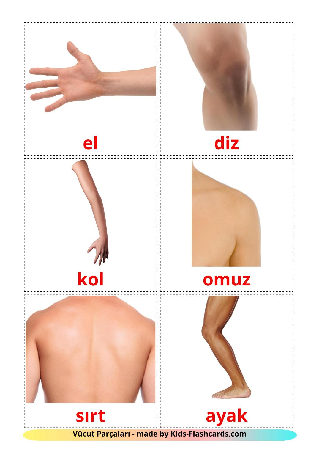 Body Parts - 26 Free Printable turkish Flashcards
