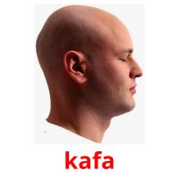 kafa picture flashcards
