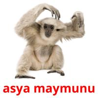 asya maymunu picture flashcards