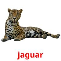 jaguar picture flashcards