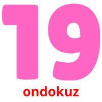 ondokuz picture flashcards