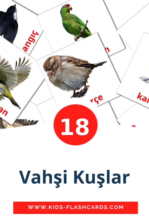 18 Vahşi Kuşlar Picture Cards for Kindergarden in turkish