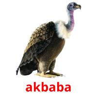 akbaba picture flashcards