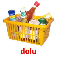 dolu picture flashcards