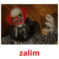 zalim picture flashcards