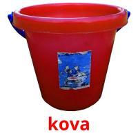kova picture flashcards
