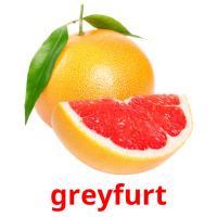 greyfurt picture flashcards