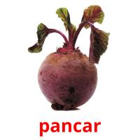 pancar picture flashcards
