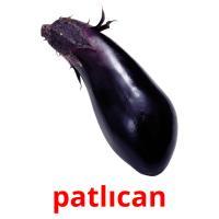 patlıcan picture flashcards
