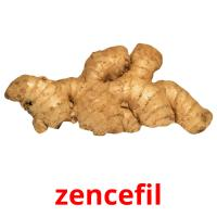zencefil picture flashcards
