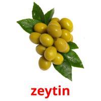 zeytin picture flashcards