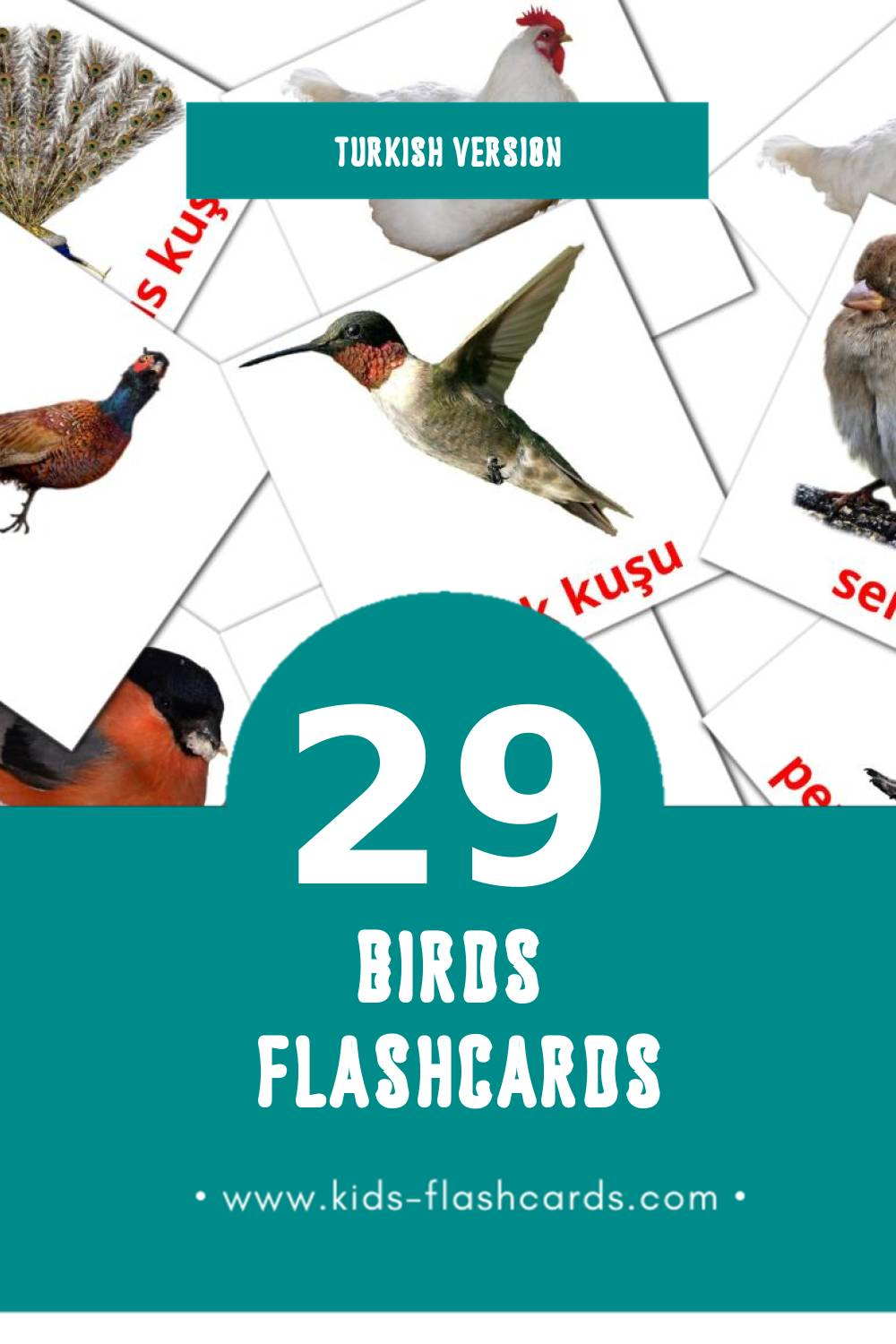 Visual Kuşlar Flashcards for Toddlers (29 cards in Turkish)