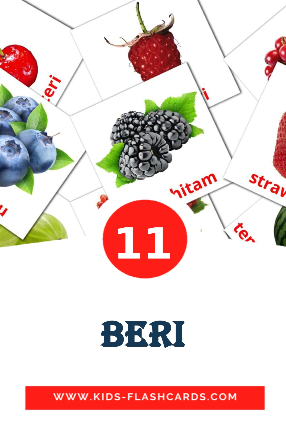 11 Beri Picture Cards for Kindergarden in malay