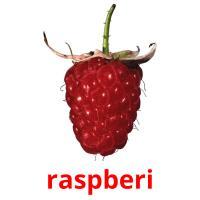raspberi picture flashcards
