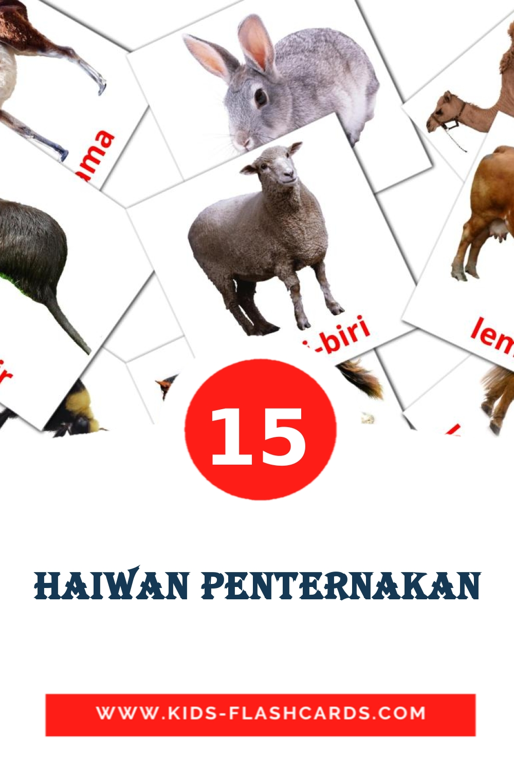15 Haiwan penternakan Picture Cards for Kindergarden in malay