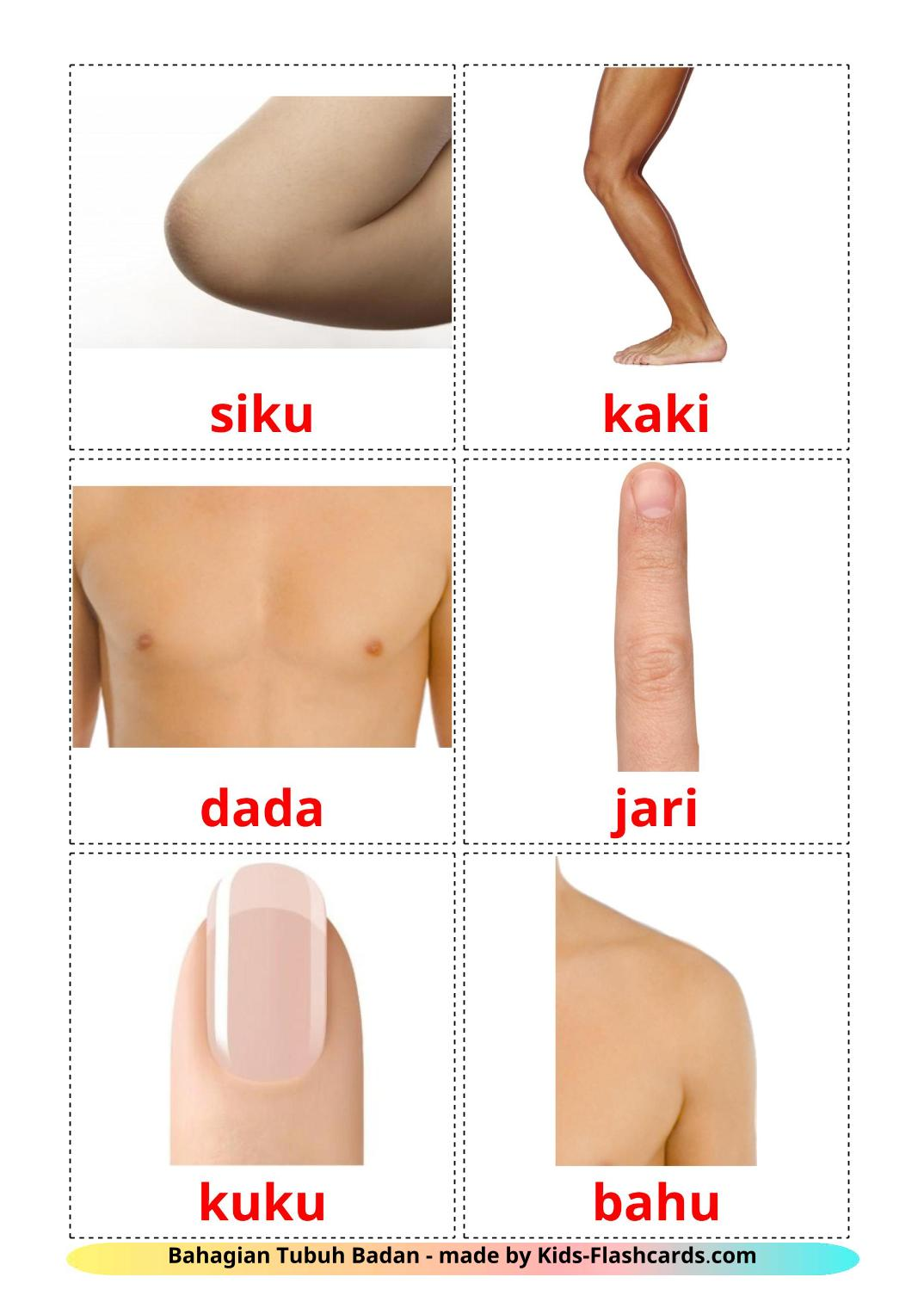 Body Parts - 26 Free Printable malay Flashcards