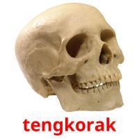 tengkorak picture flashcards