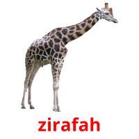 zirafah picture flashcards